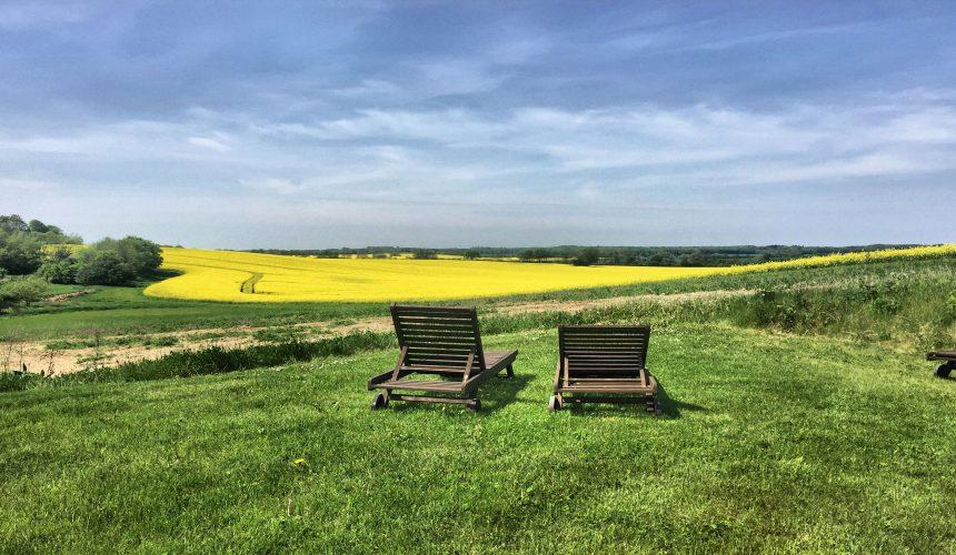 Liegestühle mit Blick auf Rapsfeld