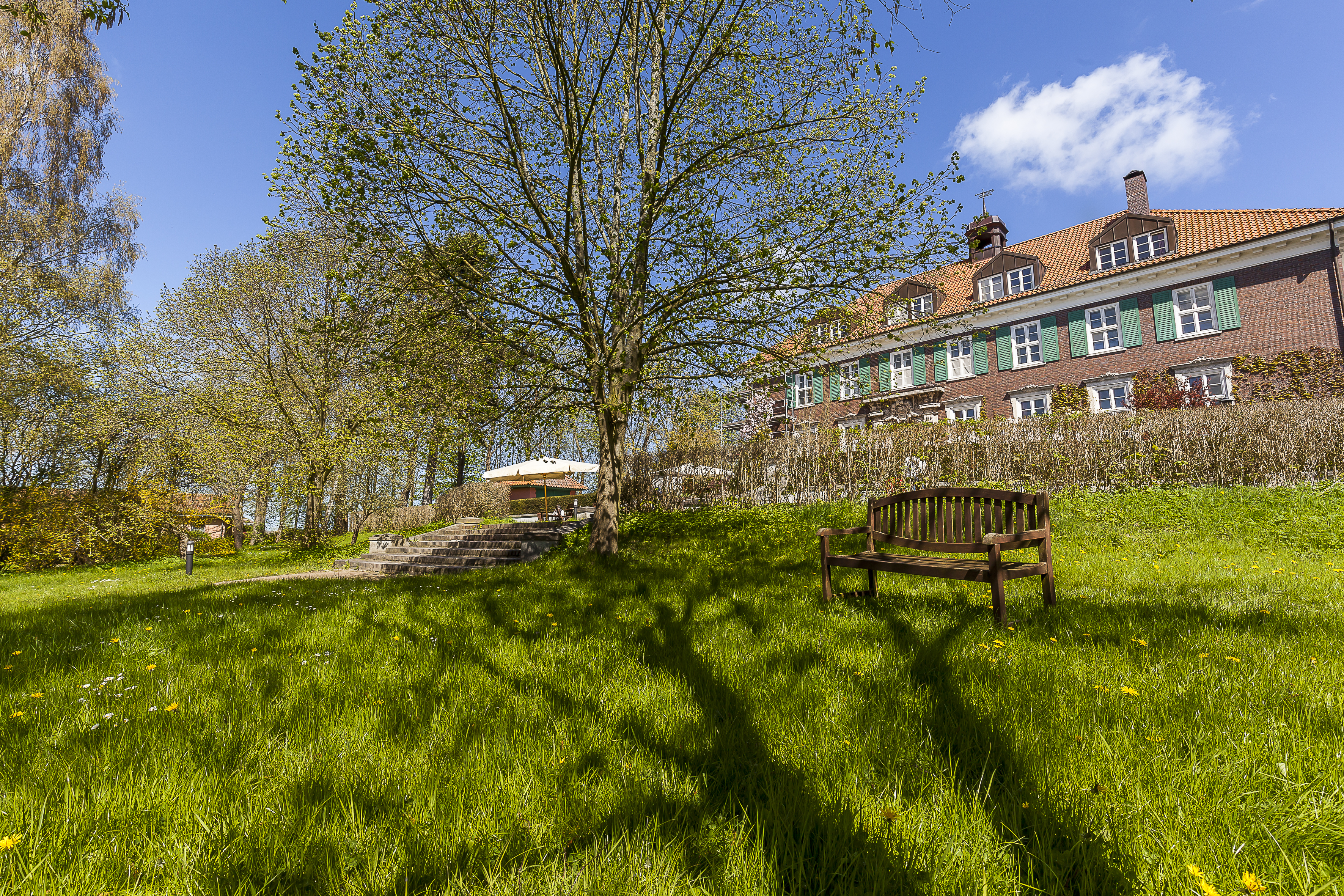 Frühling in Stellshagen